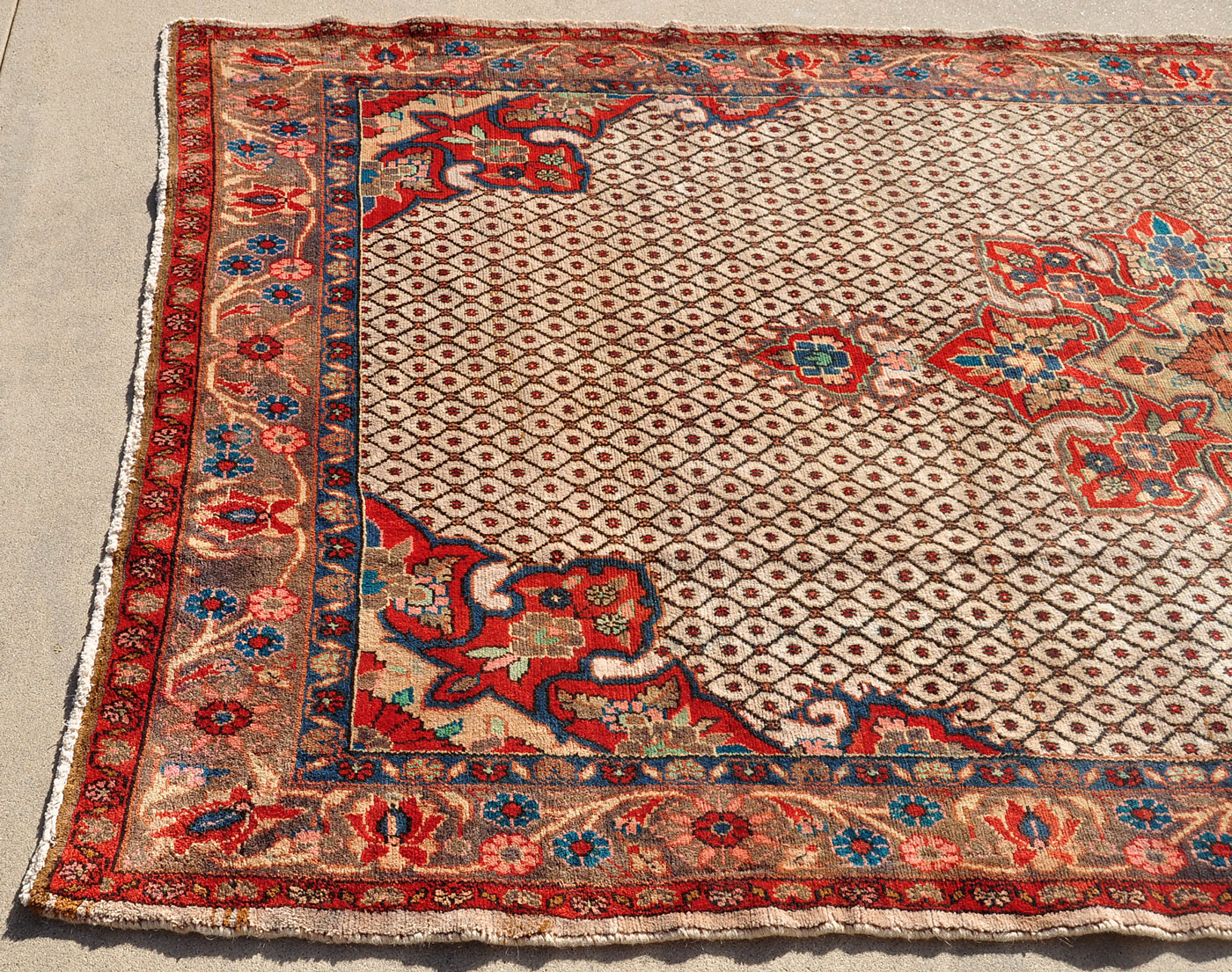Mint Kurd Rug from Iran