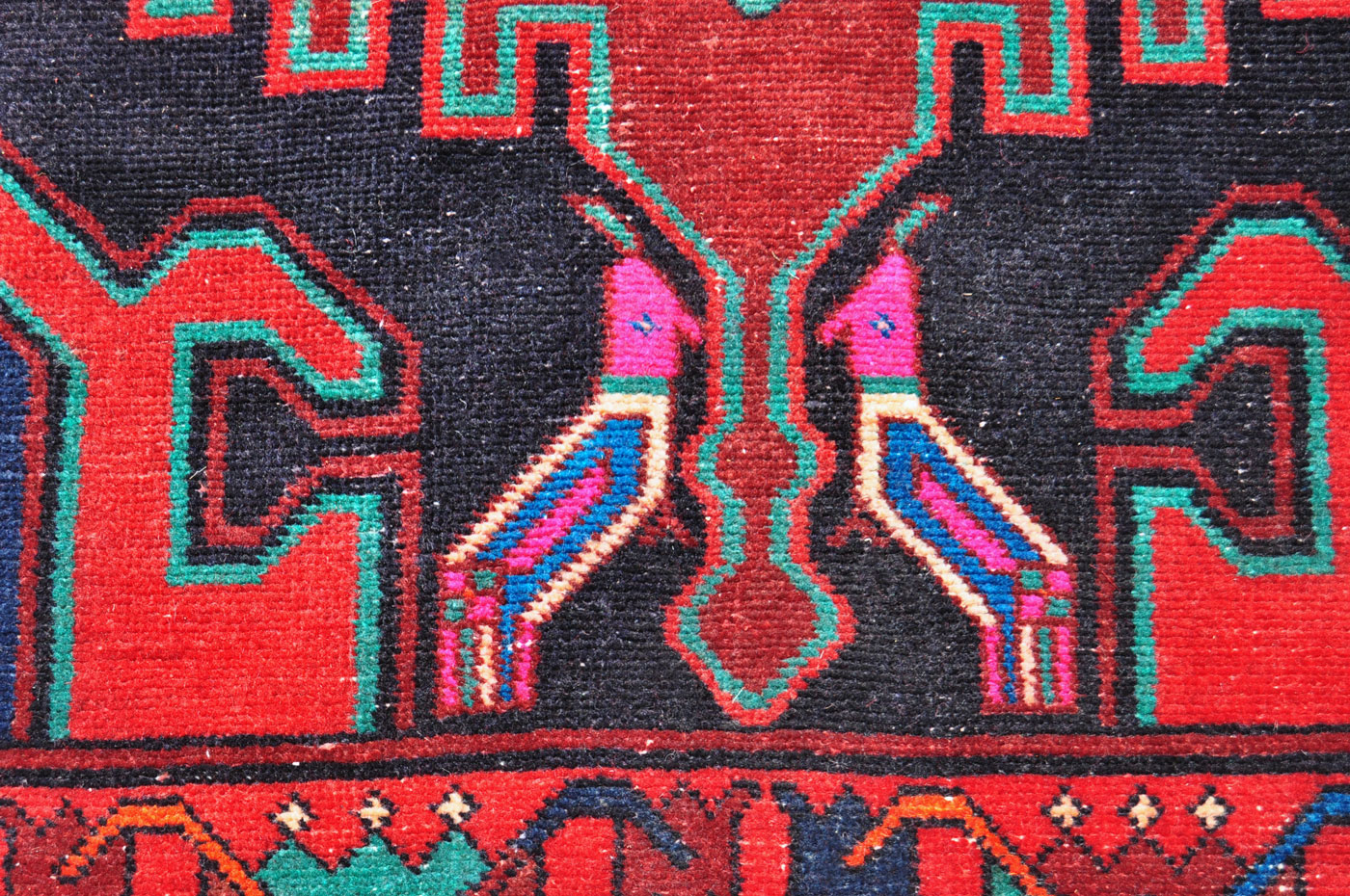 Purple Parrot Carpet