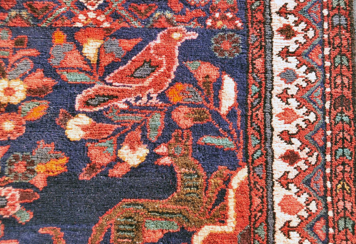 Persian psychedelic bird